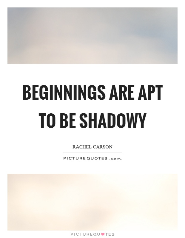 Beginnings are apt to be shadowy Picture Quote #1
