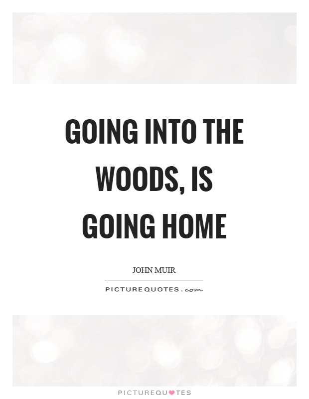 Going into the woods, is going home | Picture Quotes