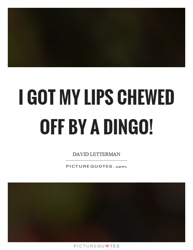 I got my lips chewed off by a dingo! Picture Quote #1