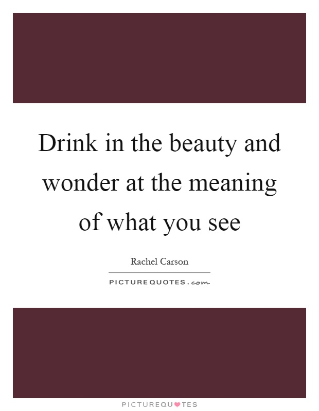 Drink in the beauty and wonder at the meaning of what you see Picture Quote #1