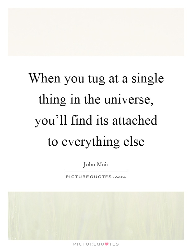 When you tug at a single thing in the universe, you'll find its attached to everything else Picture Quote #1