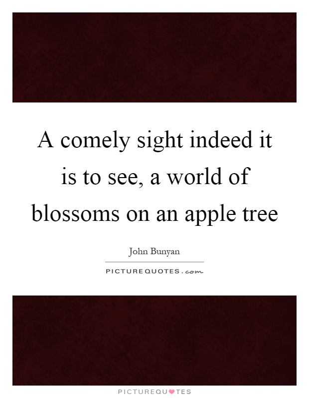 A comely sight indeed it is to see, a world of blossoms on an apple tree Picture Quote #1
