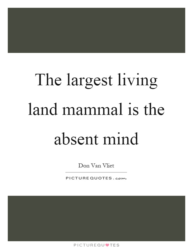 The largest living land mammal is the absent mind Picture Quote #1