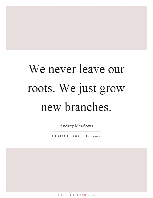 We never leave our roots. We just grow new branches Picture Quote #1