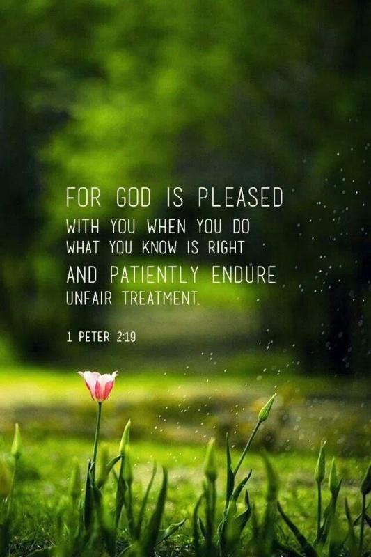 For God is pleased with you, when you do what is right and patiently endure unfair treatment Picture Quote #1