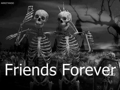 Friends Forever Quotes Alluring Friends Forever  Picture Quotes