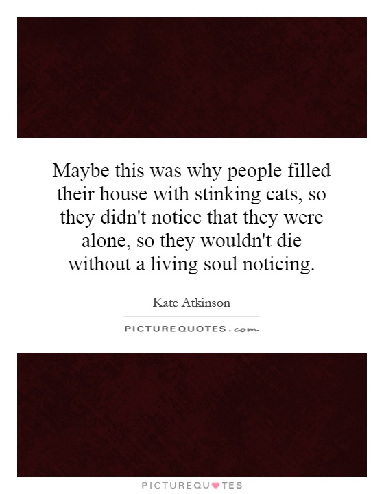 Maybe this was why people filled their house with stinking cats, so they didn't notice that they were alone, so they wouldn't die without a living soul noticing Picture Quote #1