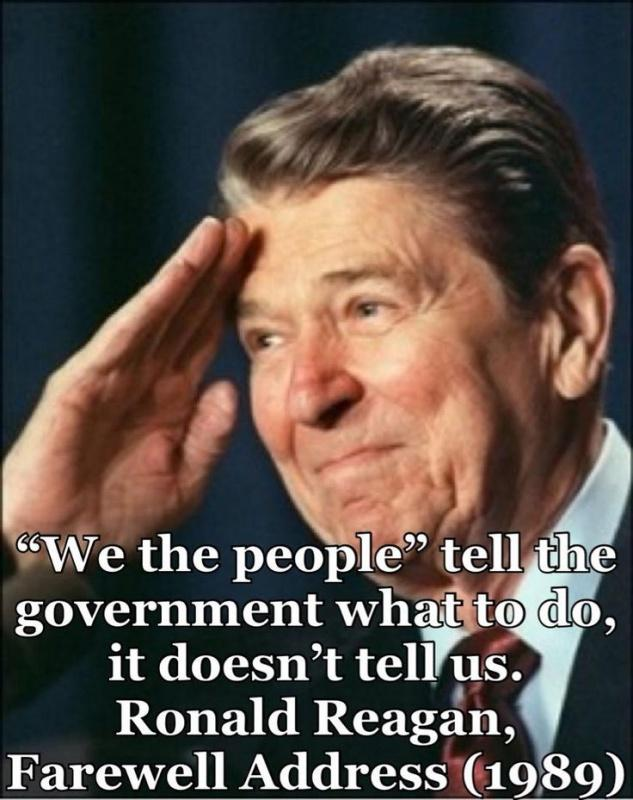 We the people tell the government what to do, it doesn't tell us Picture Quote #1