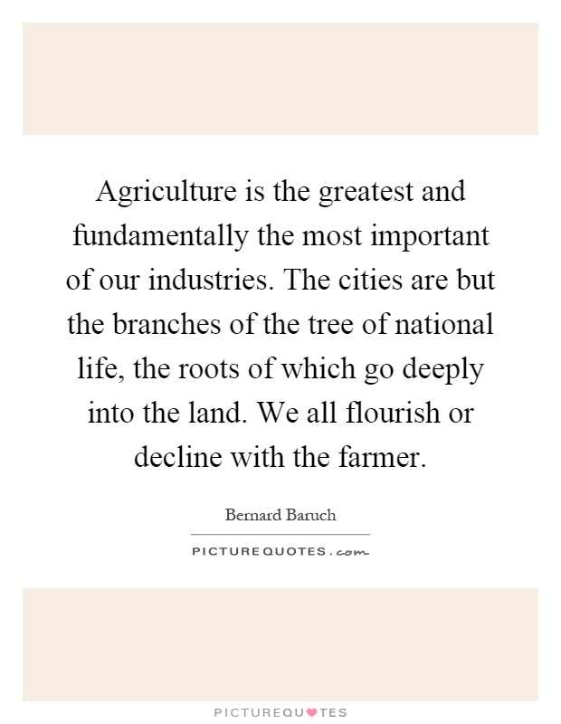 Agriculture is the greatest and fundamentally the most important of our industries. The cities are but the branches of the tree of national life, the roots of which go deeply into the land. We all flourish or decline with the farmer Picture Quote #1
