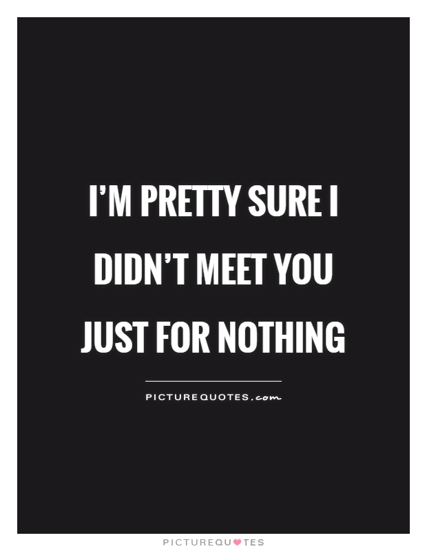 I'm pretty sure I didn't meet you just for nothing Picture Quote #1