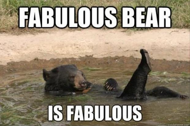 Fabulous bear is fabulous Picture Quote #1