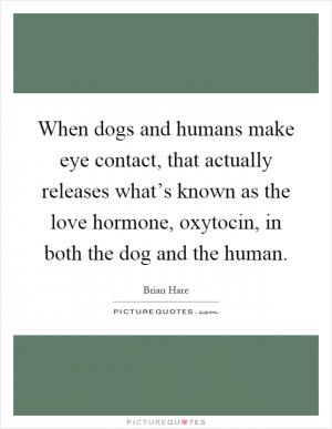dog and human relationship history quotes