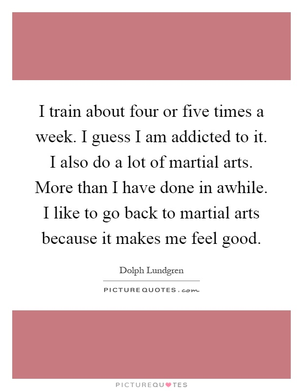 I train about four or five times a week. I guess I am addicted to it. I also do a lot of martial arts. More than I have done in awhile. I like to go back to martial arts because it makes me feel good Picture Quote #1