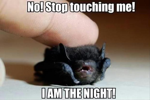 No! stop touching me! I am the night! Picture Quote #1