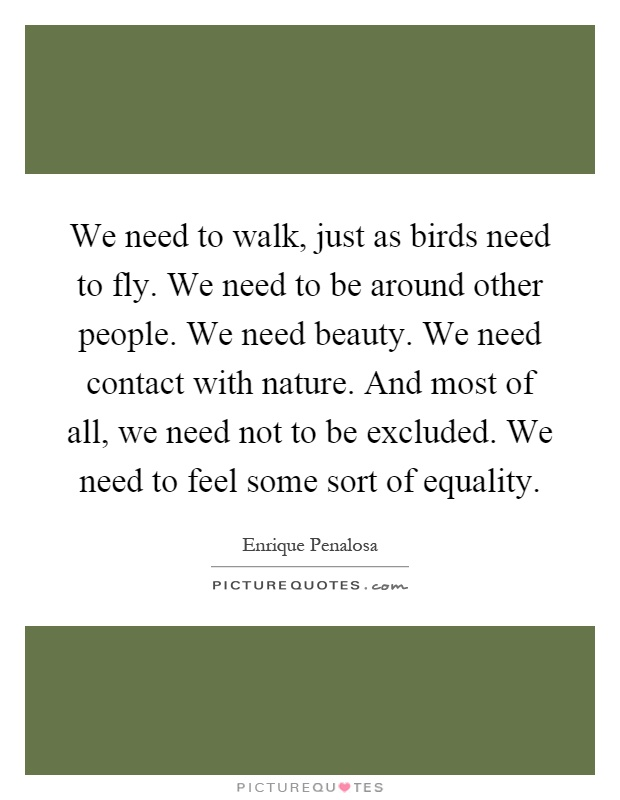 We need to walk, just as birds need to fly. We need to be around other people. We need beauty. We need contact with nature. And most of all, we need not to be excluded. We need to feel some sort of equality Picture Quote #1