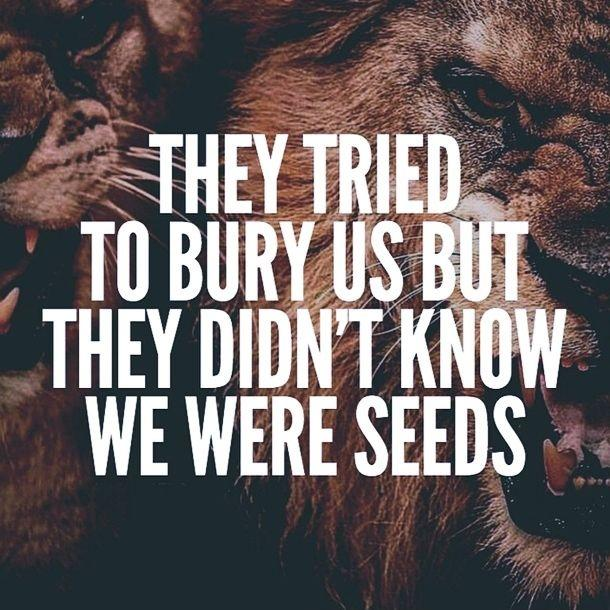 They tried to bury us but they didn't know we were seeds Picture Quote #1