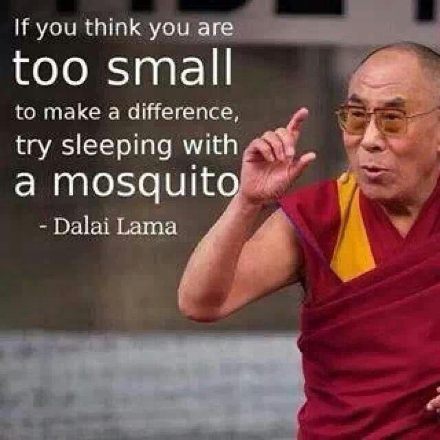 If you think you are too small to make a difference, try sleeping with a mosquito Picture Quote #1