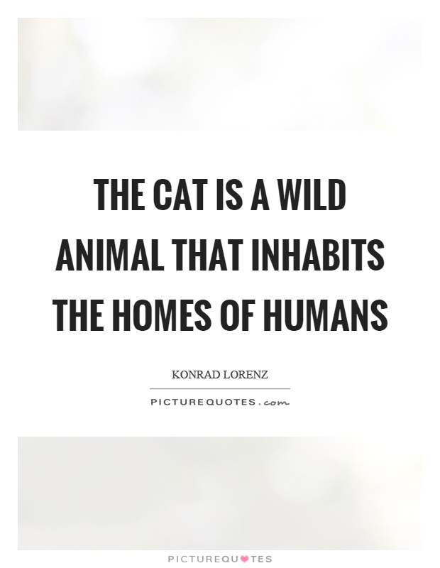 The cat is a wild animal that inhabits the homes of humans Picture Quote #1
