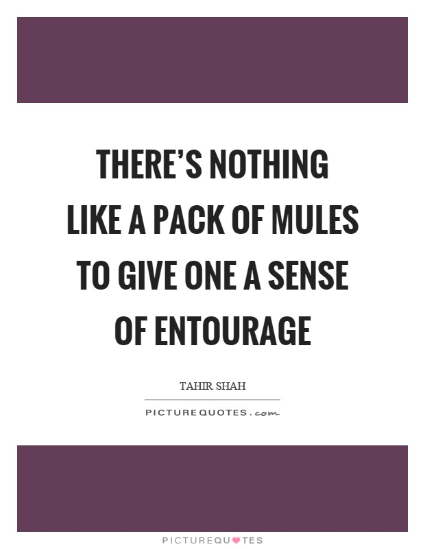 There's nothing like a pack of mules to give one a sense of entourage Picture Quote #1