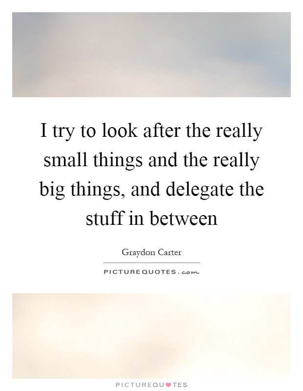 I try to look after the really small things and the really big things, and delegate the stuff in between Picture Quote #1