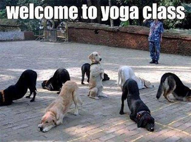 Welcome to yoga class Picture Quote #1