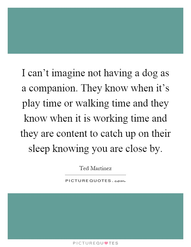 I can't imagine not having a dog as a companion. They know when it's play time or walking time and they know when it is working time and they are content to catch up on their sleep knowing you are close by Picture Quote #1