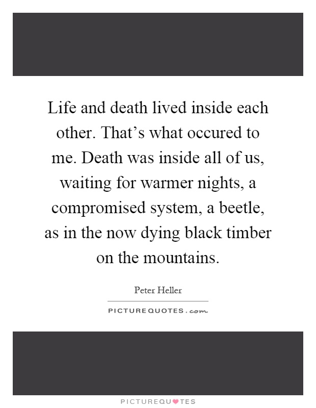 Life and death lived inside each other. That's what occured to me. Death was inside all of us, waiting for warmer nights, a compromised system, a beetle, as in the now dying black timber on the mountains Picture Quote #1