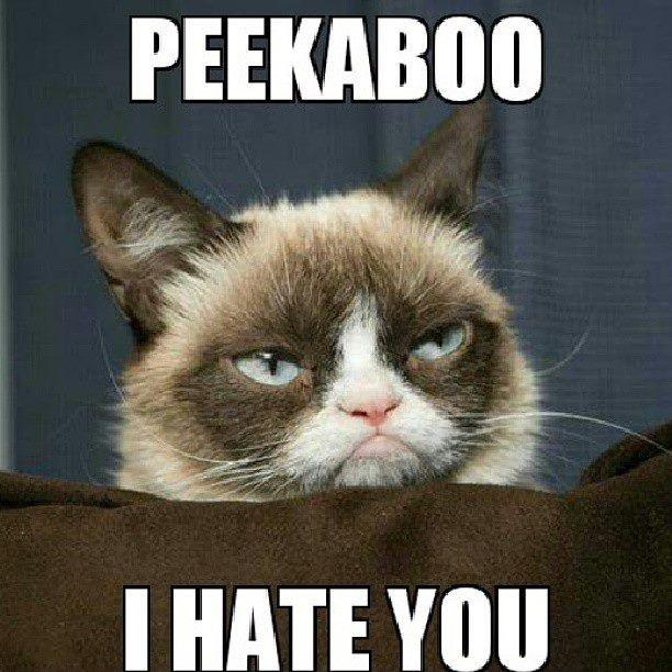 Peekaboo I hate you Picture Quote #1