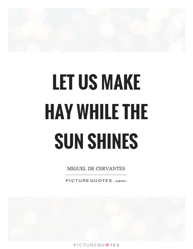 Let us make hay while the sun shines Picture Quote #1