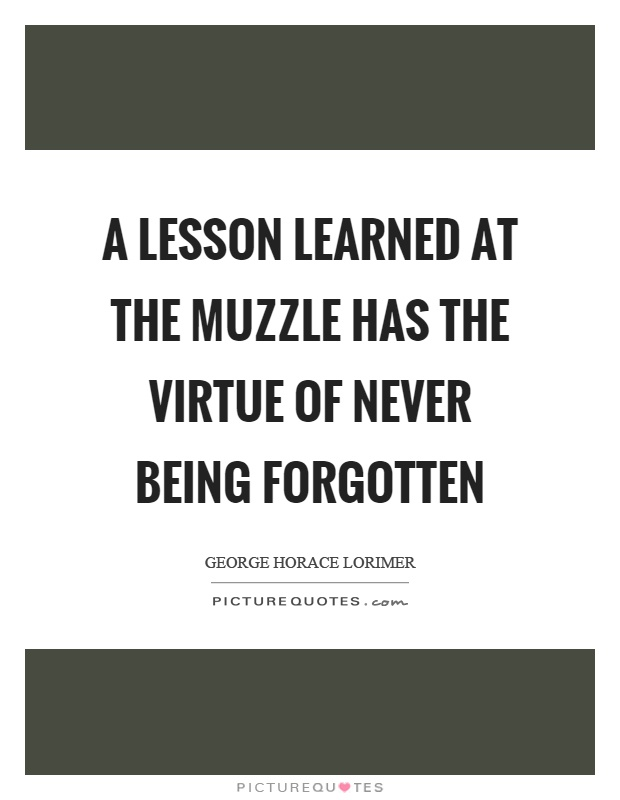 A lesson learned at the muzzle has the virtue of never being forgotten Picture Quote #1