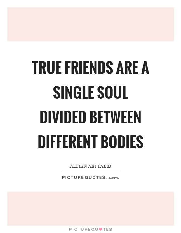 True friends are a single soul divided between different bodies Picture Quote #1