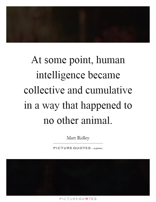 At some point, human intelligence became collective and cumulative in a way that happened to no other animal Picture Quote #1