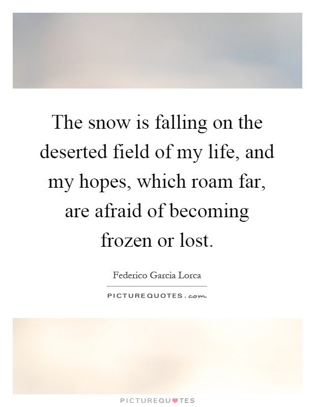 The snow is falling on the deserted field of my life, and my hopes, which roam far, are afraid of becoming frozen or lost Picture Quote #1