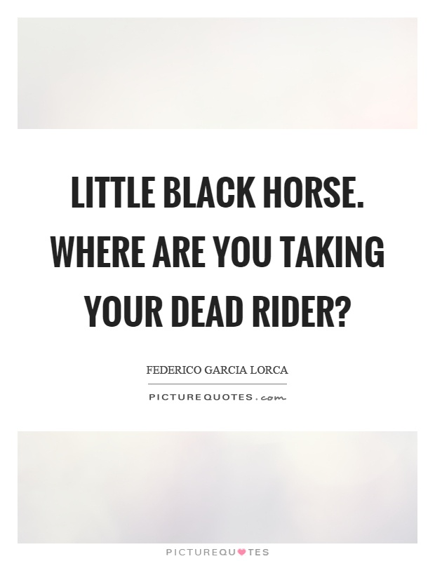 Little black horse. Where are you taking your dead rider? Picture Quote #1