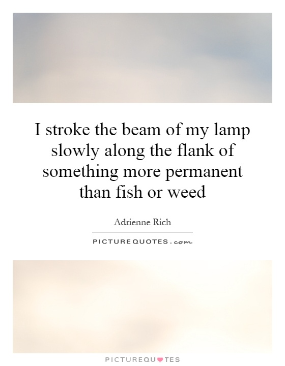 I stroke the beam of my lamp slowly along the flank of something more permanent than fish or weed Picture Quote #1