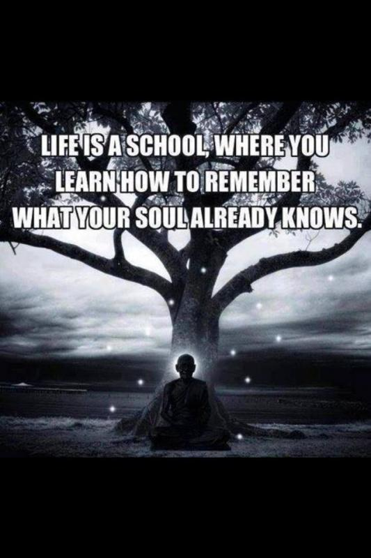 Life is a school, where you learn how to remember what your soul already knows Picture Quote #1