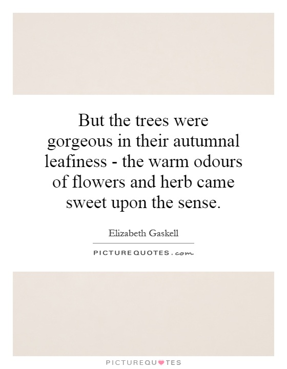 But the trees were gorgeous in their autumnal leafiness - the warm odours of flowers and herb came sweet upon the sense Picture Quote #1