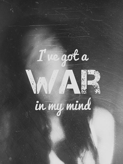 I've got a war in my mind Picture Quote #1