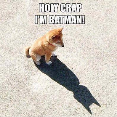 Holy crap, I'm Batman Picture Quote #1