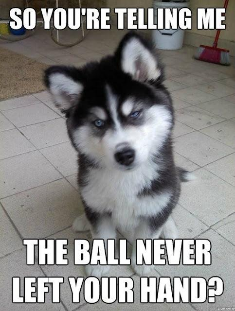 So you're telling me the ball never left your hand? Picture Quote #1