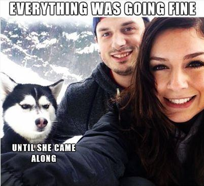 Everything was going fine, until she came along Picture Quote #1