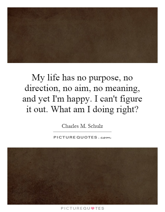 My life has no purpose, no direction, no aim, no meaning, and yet I'm happy. I can't figure it out. What am I doing right? Picture Quote #1