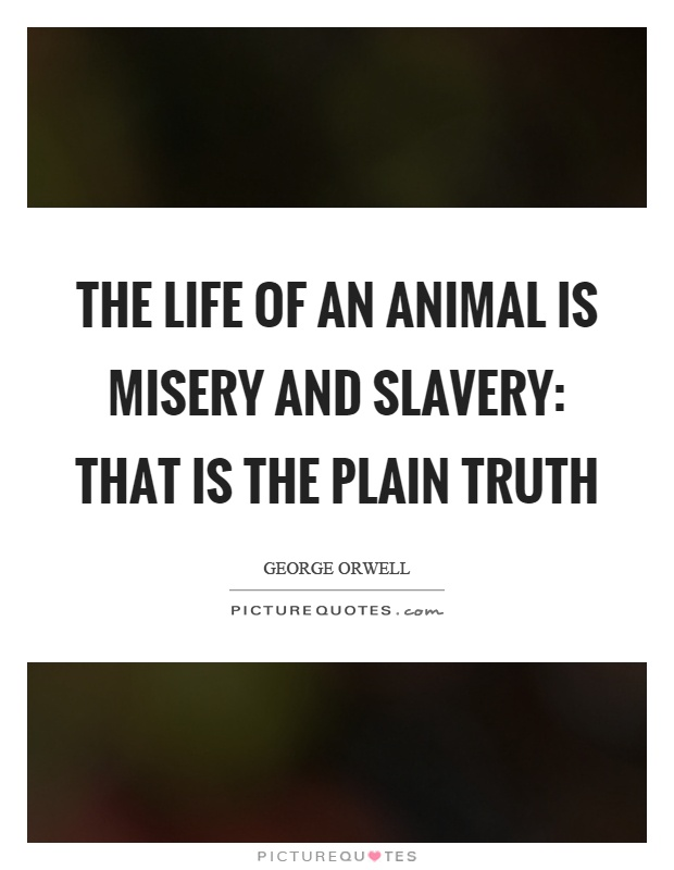 The life of an animal is misery and slavery: that is the plain truth Picture Quote #1