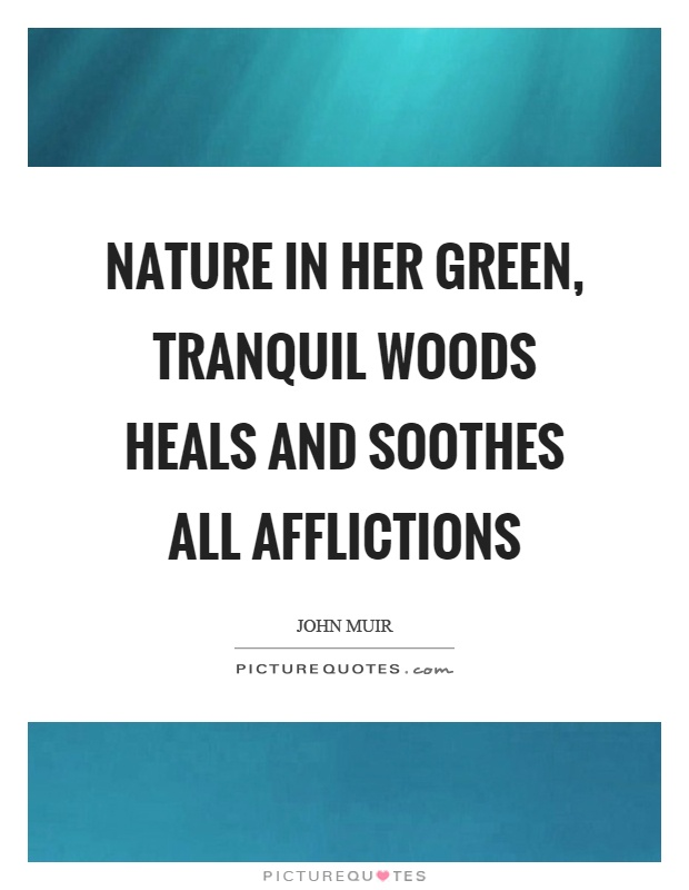 Nature in her green, tranquil woods heals and soothes all afflictions Picture Quote #1