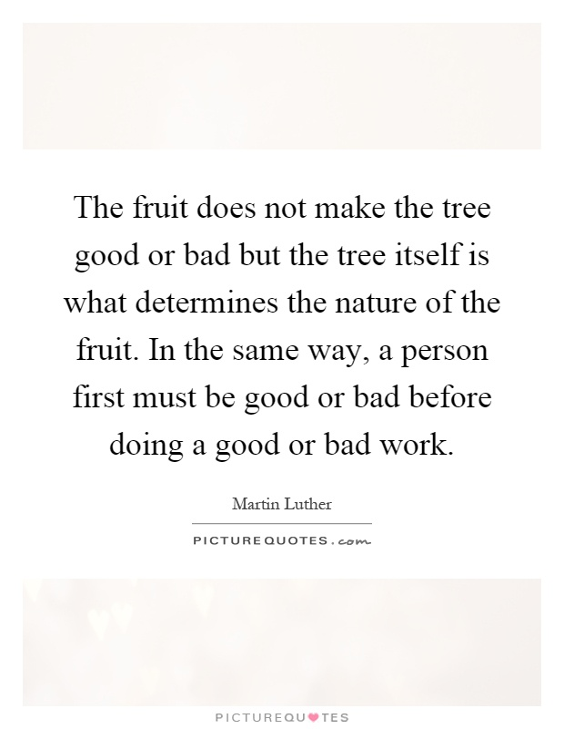 The fruit does not make the tree good or bad but the tree itself is what determines the nature of the fruit. In the same way, a person first must be good or bad before doing a good or bad work Picture Quote #1