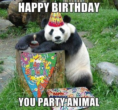 Happy birthday, you party animal Picture Quote #1