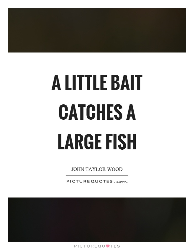 A little bait catches a large fish Picture Quote #1