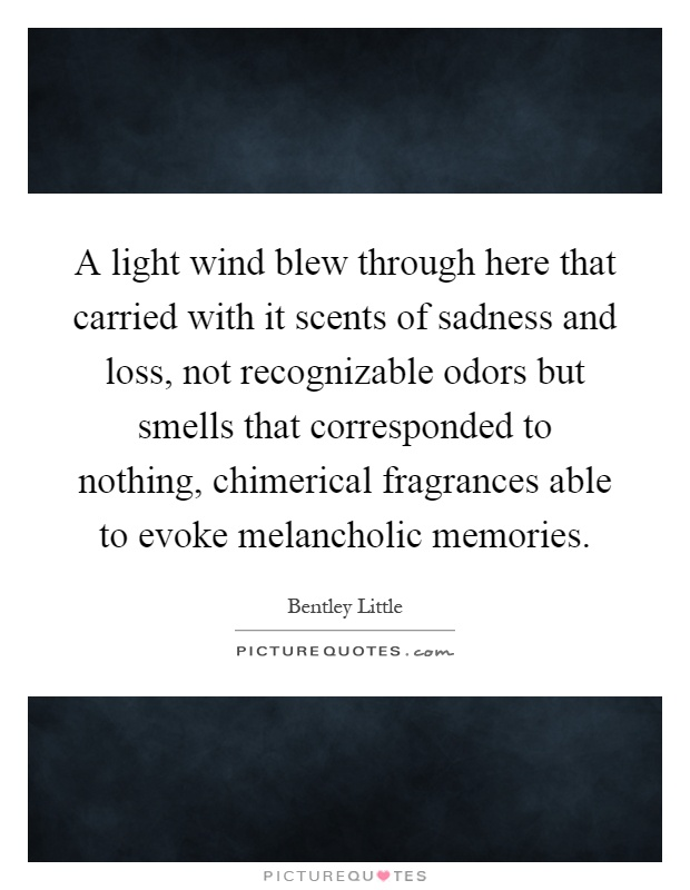 A light wind blew through here that carried with it scents of sadness and loss, not recognizable odors but smells that corresponded to nothing, chimerical fragrances able to evoke melancholic memories Picture Quote #1