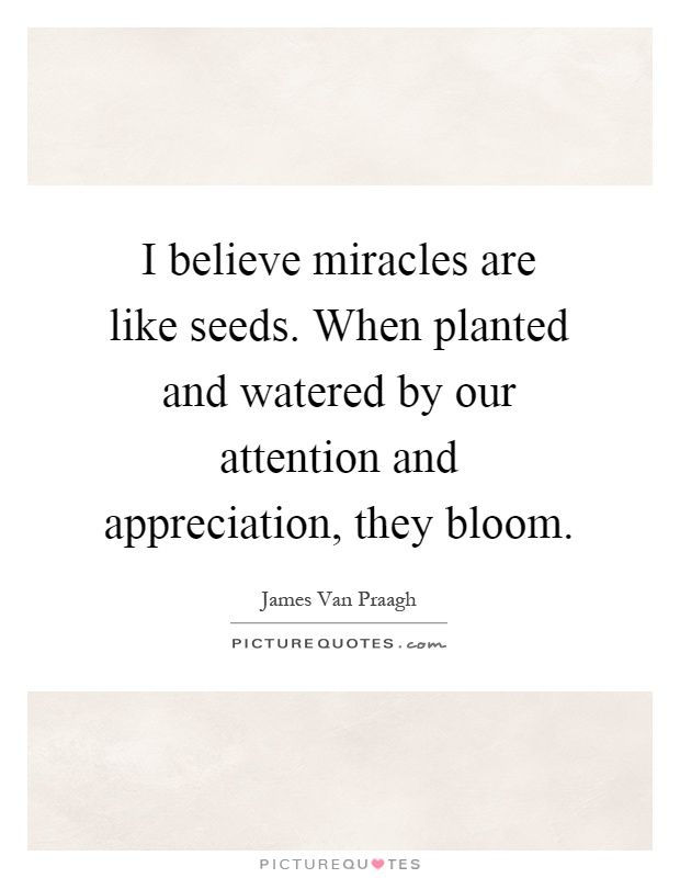 I believe miracles are like seeds. When planted and watered by our attention and appreciation, they bloom Picture Quote #1