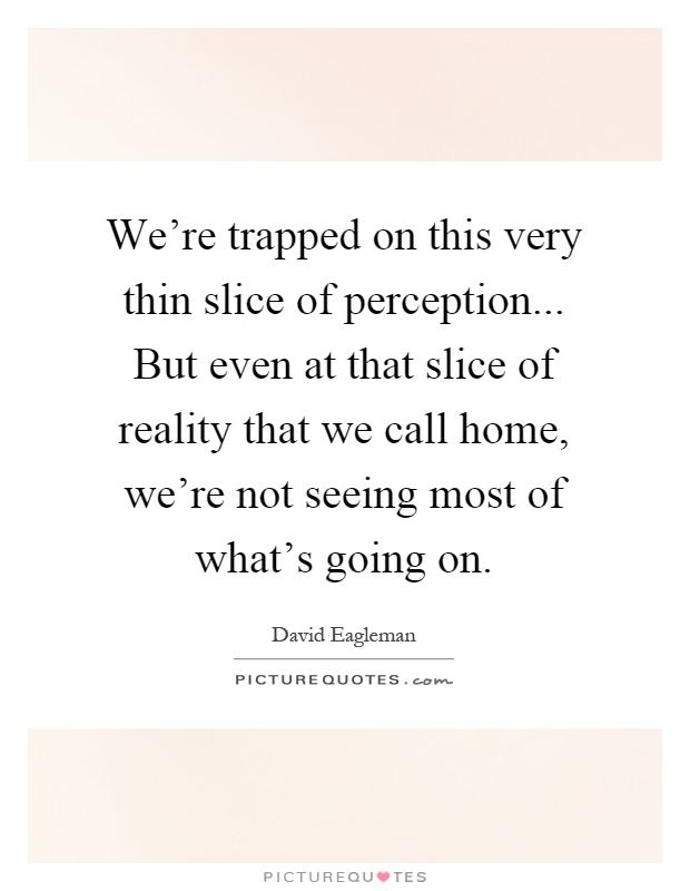 We're trapped on this very thin slice of perception... But even at that slice of reality that we call home, we're not seeing most of what's going on Picture Quote #1
